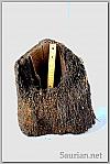 Tree Fern Stump